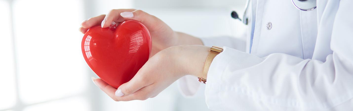 Прием врача–кардиолога + ЭКГ со скидкой 10%
